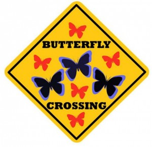 Butterfly Crossing