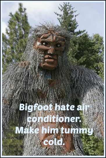 Bigfoot hate air conditioner.