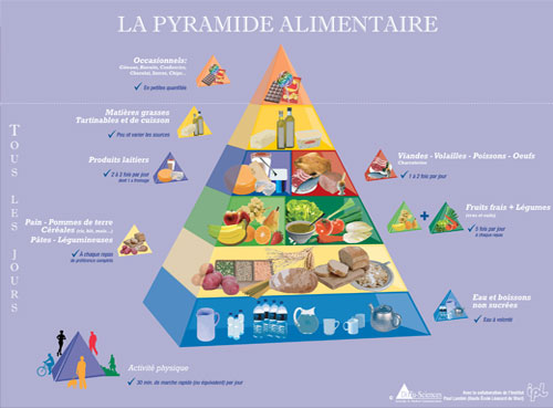 Belgian Food Pyramid
