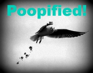 Poopified!