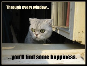 Window of happiness