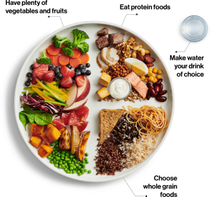 Healthy plate from the 2019 Canada food guide